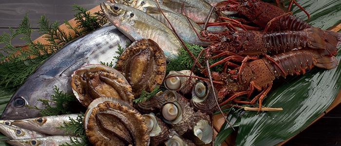 五島コンカナワイナリー&リゾート 長崎県五島列島観光案内 メインイメージ